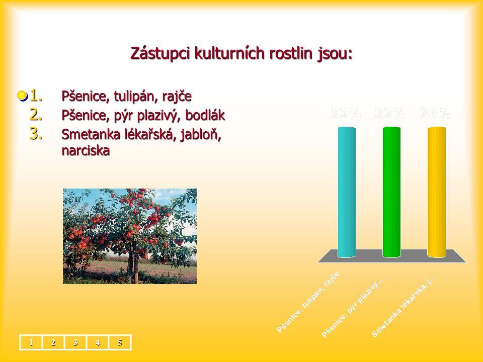 Zástupci kulturních rostlin jsou: