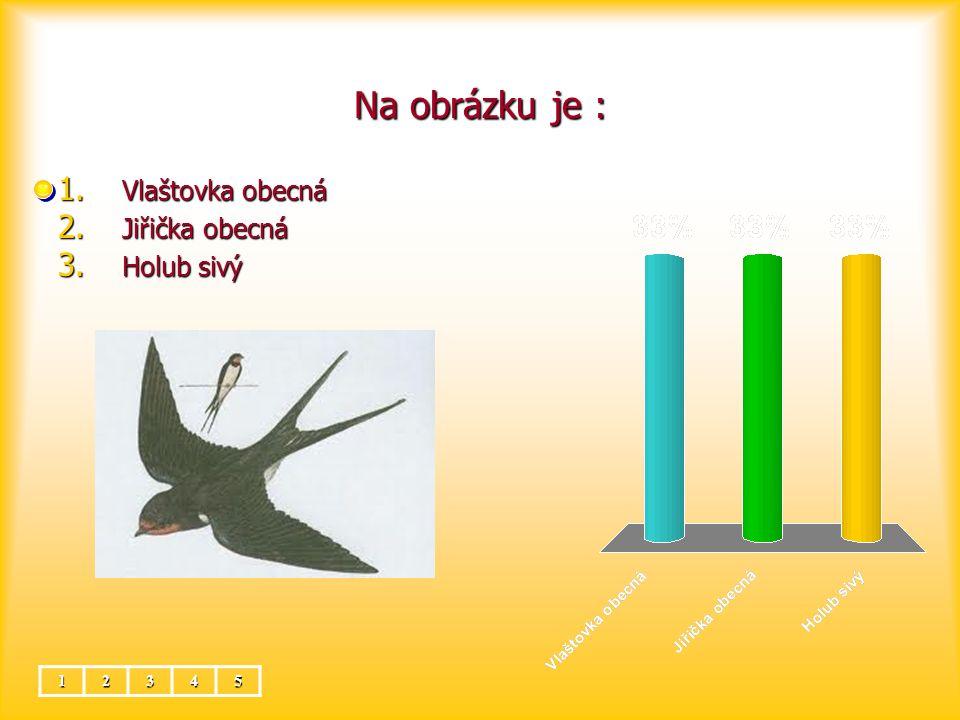 Na obrázku je : Vlaštovka obecná Jiřička obecná Holub sivý 1 2 3 4 5