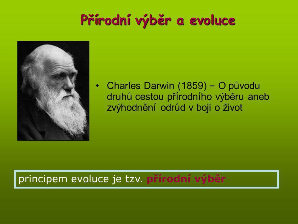 Přírodní výběr a evoluce