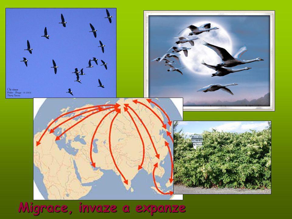 Migrace, invaze a expanze