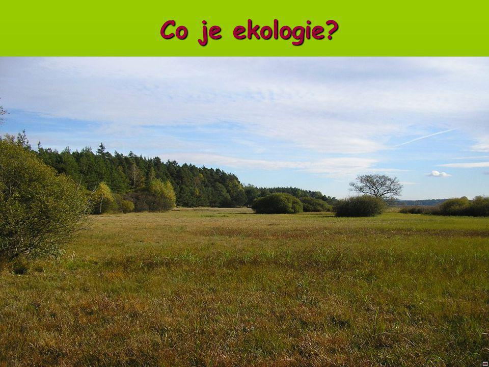 Úvod do obecné ekologie