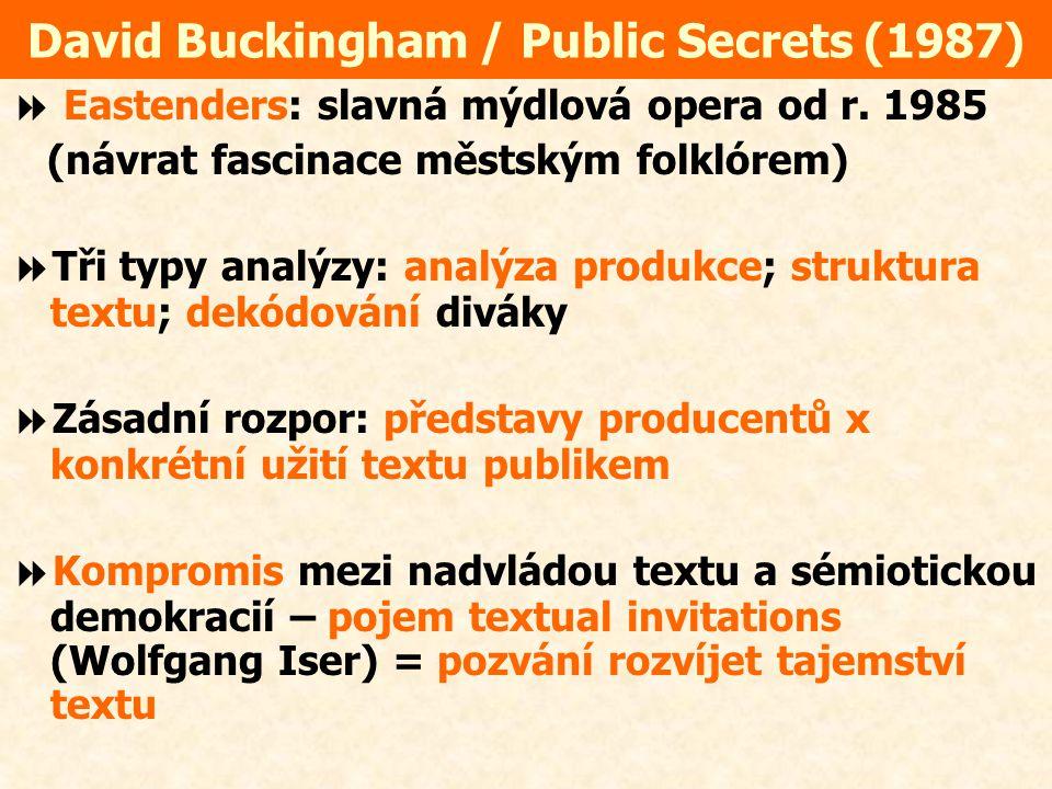 David Buckingham / Public Secrets (1987)