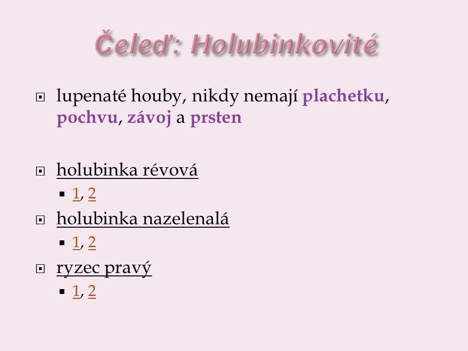 Čeleď: Holubinkovité lupenaté houby, nikdy nemají plachetku, pochvu, závoj a prsten. holubinka révová.