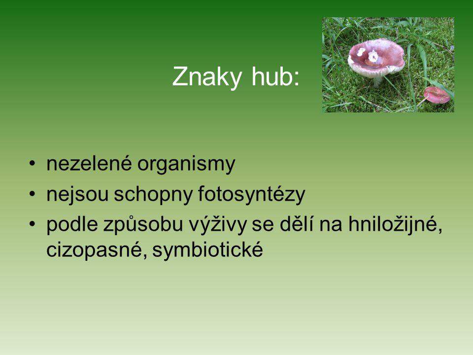 Znaky hub: nezelené organismy nejsou schopny fotosyntézy