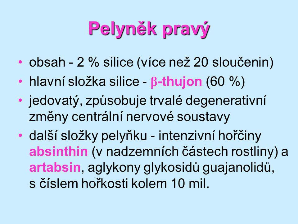 Pelyněk pravý obsah - 2 % silice (více než 20 sloučenin)