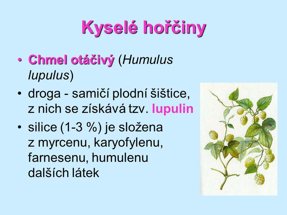 Kyselé hořčiny Chmel otáčivý (Humulus lupulus)