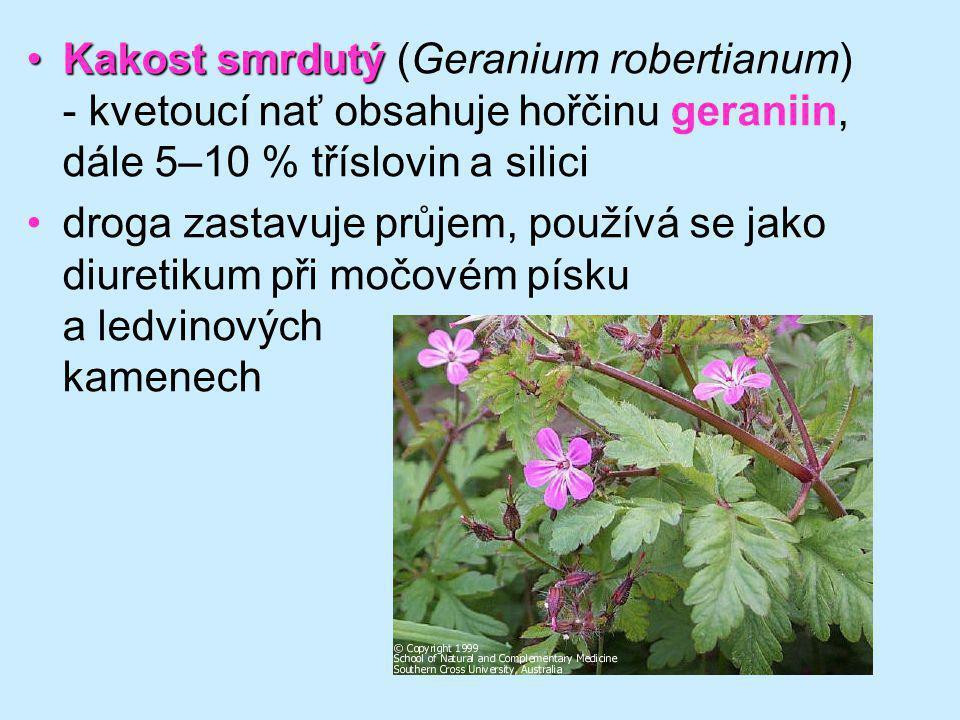 Kakost smrdutý (Geranium robertianum) - kvetoucí nať obsahuje hořčinu geraniin, dále 5–10 % tříslovin a silici