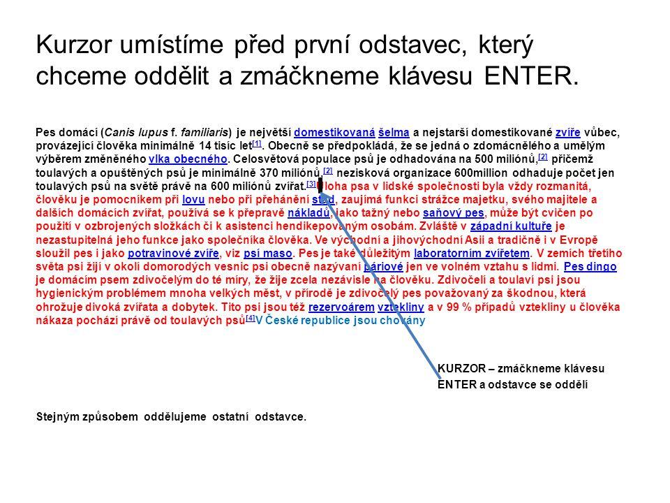 Kurzor umístíme před první odstavec, který chceme oddělit a zmáčkneme klávesu ENTER.