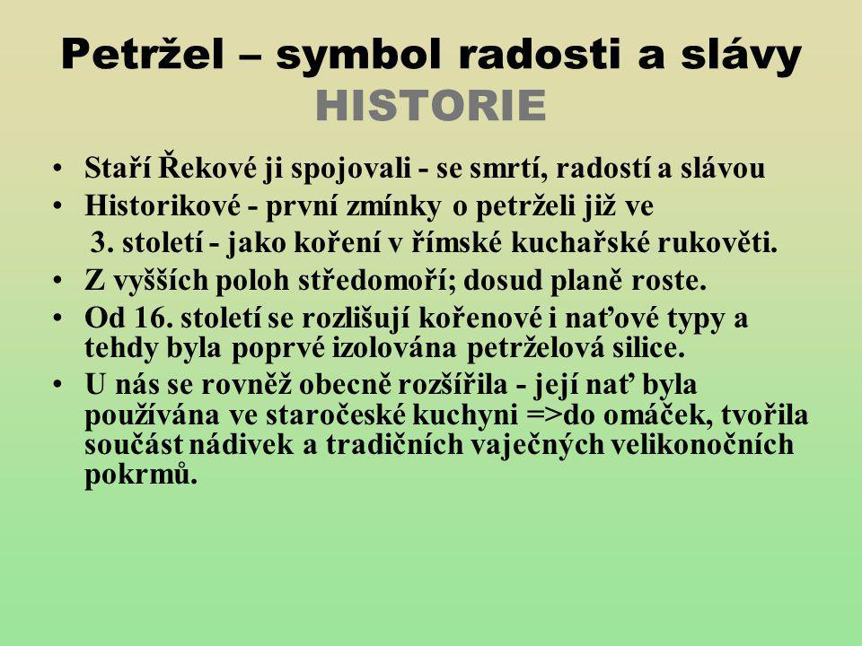 Petržel – symbol radosti a slávy HISTORIE