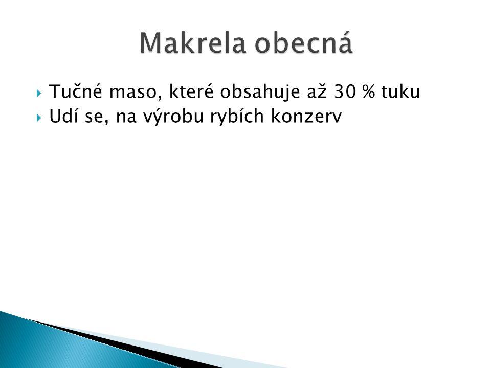 Makrela obecná Tučné maso, které obsahuje až 30 % tuku
