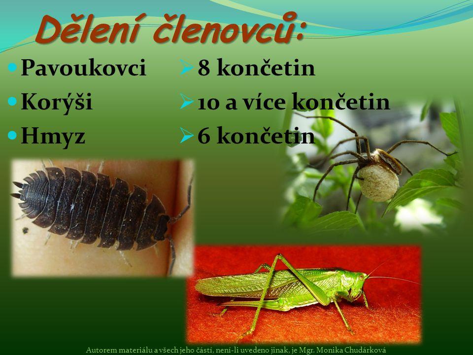 Dělení členovců: Pavoukovci Korýši Hmyz 8 končetin 10 a více končetin
