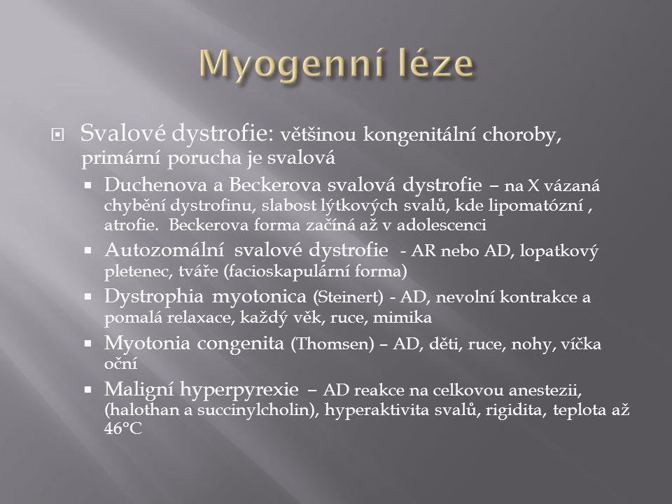 Myogenní léze Svalové dystrofie: většinou kongenitální choroby, primární porucha je svalová.