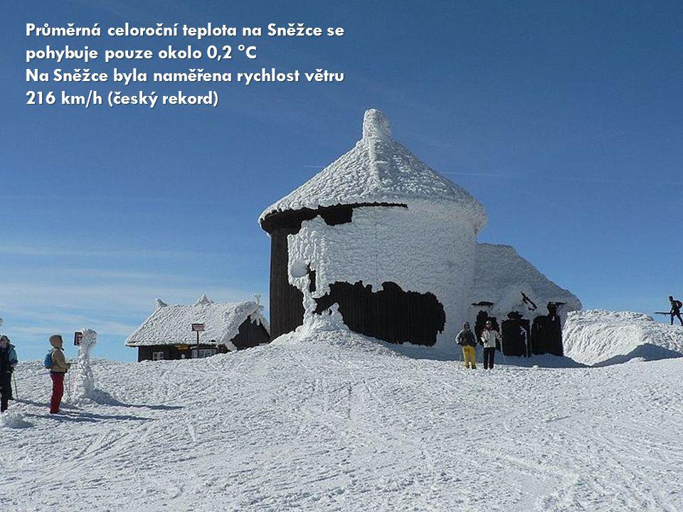 Průměrná celoroční teplota na Sněžce se pohybuje pouze okolo 0,2 °C