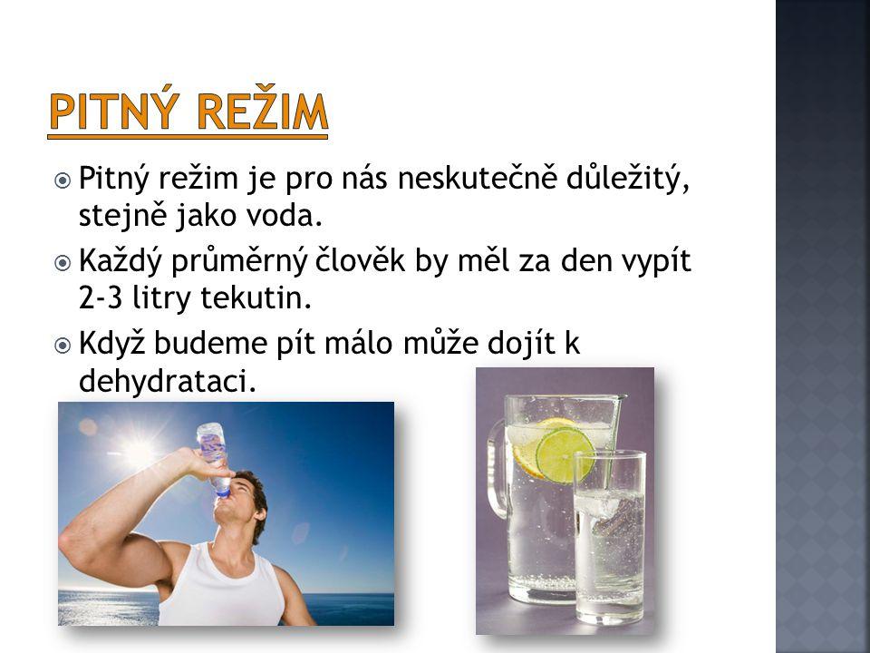 Pitný režim Pitný režim je pro nás neskutečně důležitý, stejně jako voda. Každý průměrný člověk by měl za den vypít 2-3 litry tekutin.