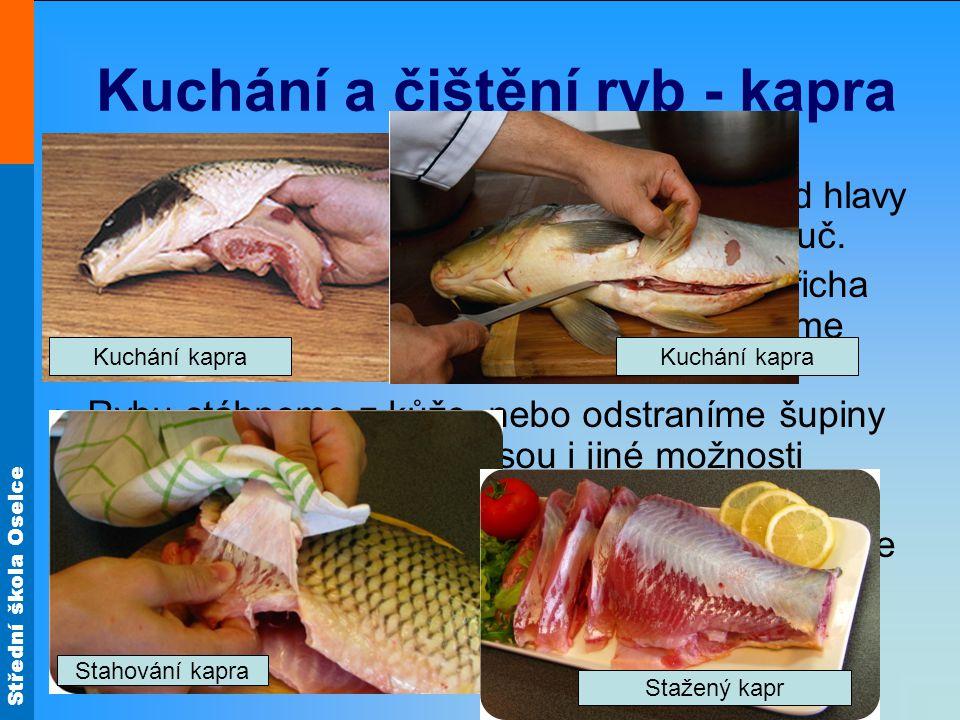 Kuchání a čištění ryb - kapra