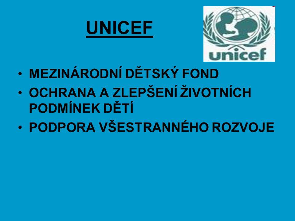 UNICEF MEZINÁRODNÍ DĚTSKÝ FOND