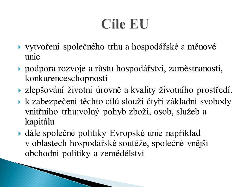 Cíle EU vytvoření společného trhu a hospodářské a měnové unie