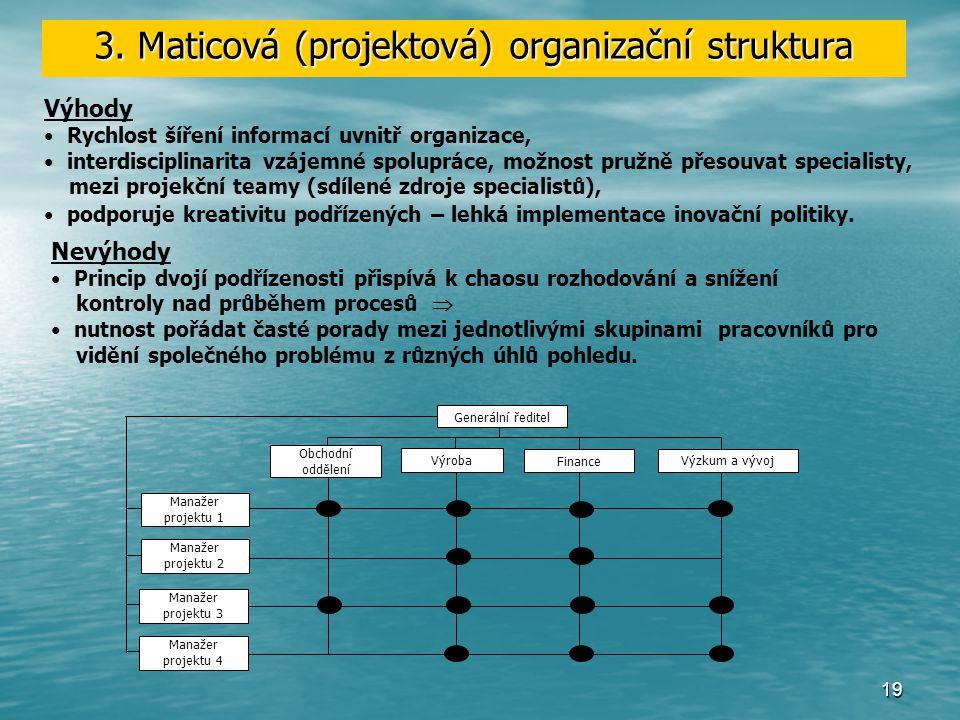 3. Maticová (projektová) organizační struktura