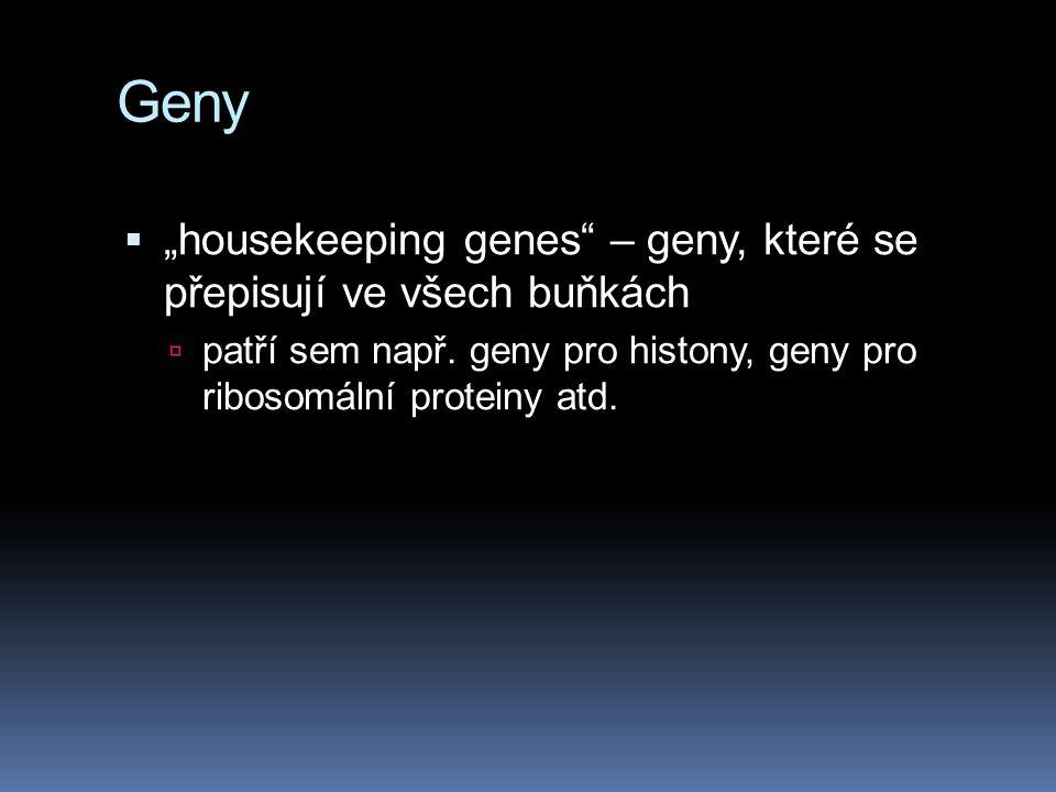 """Geny """"housekeeping genes – geny, které se přepisují ve všech buňkách"""