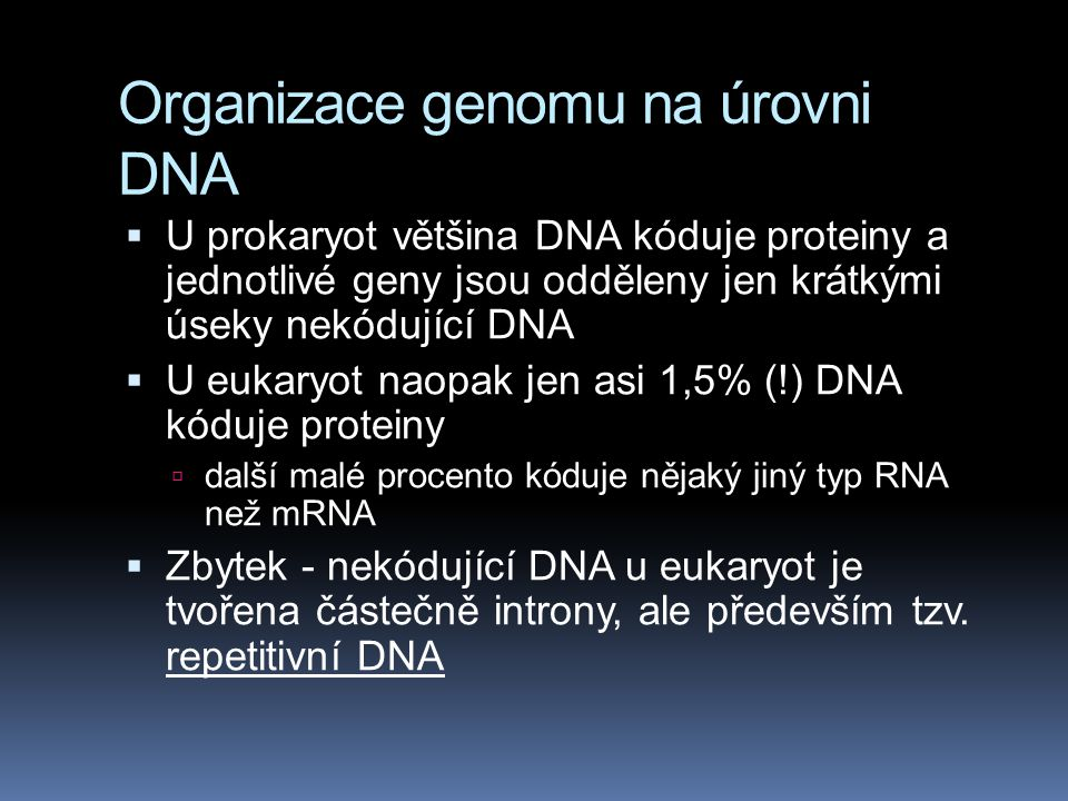 Organizace genomu na úrovni DNA