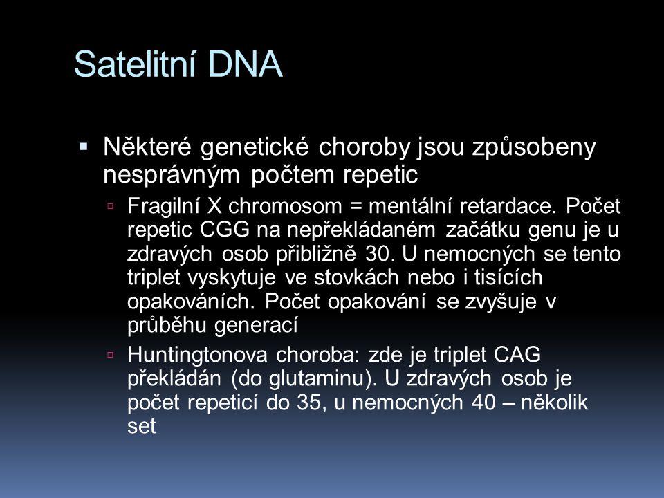 Satelitní DNA Některé genetické choroby jsou způsobeny nesprávným počtem repetic.