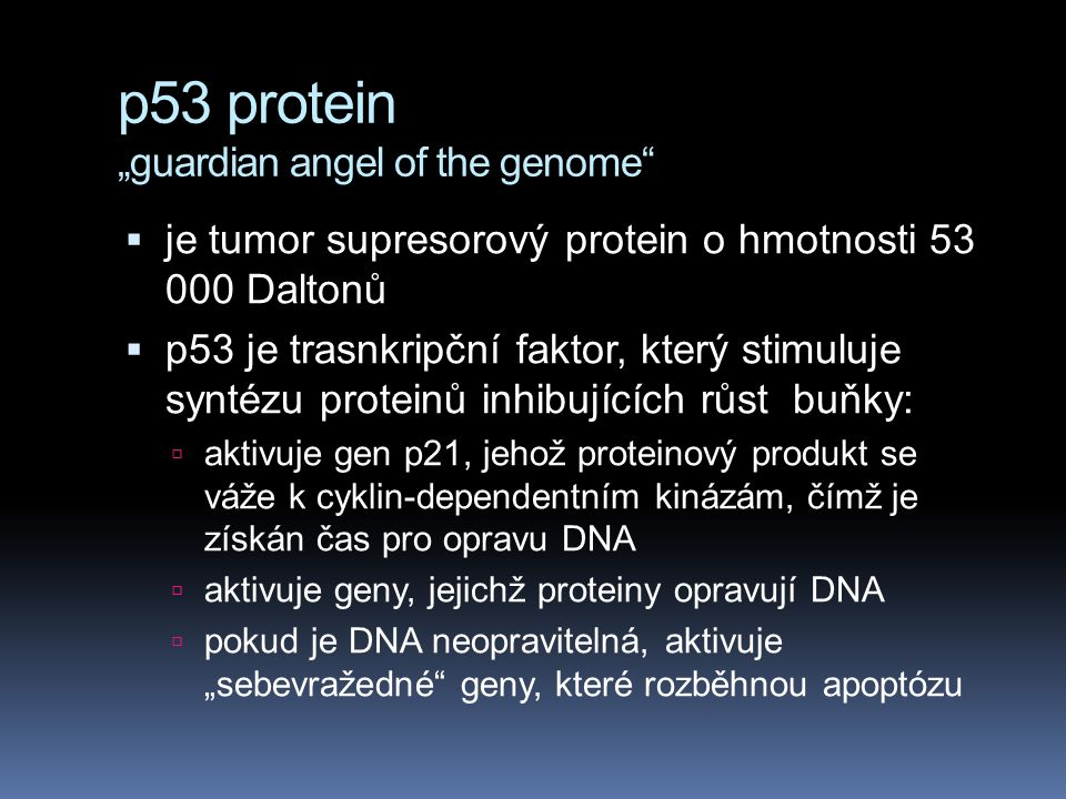 "p53 protein ""guardian angel of the genome"