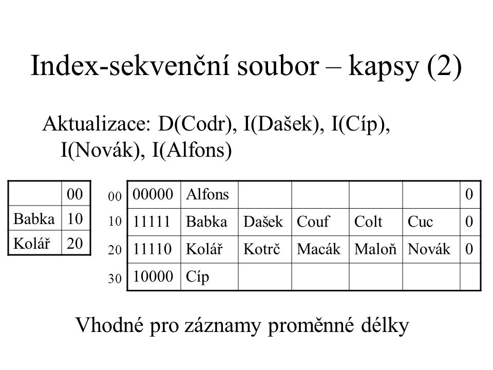 Index-sekvenční soubor – kapsy (2)
