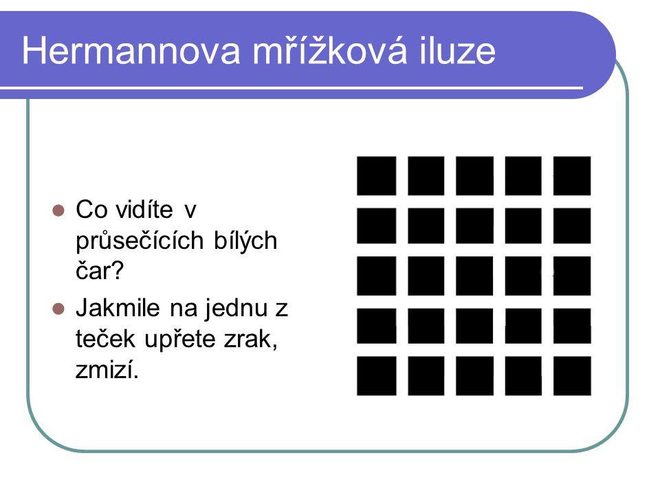 Hermannova mřížková iluze
