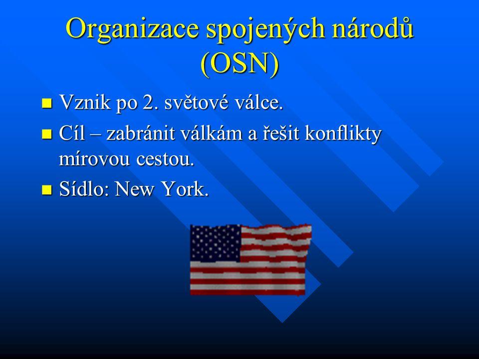 Organizace spojených národů (OSN)