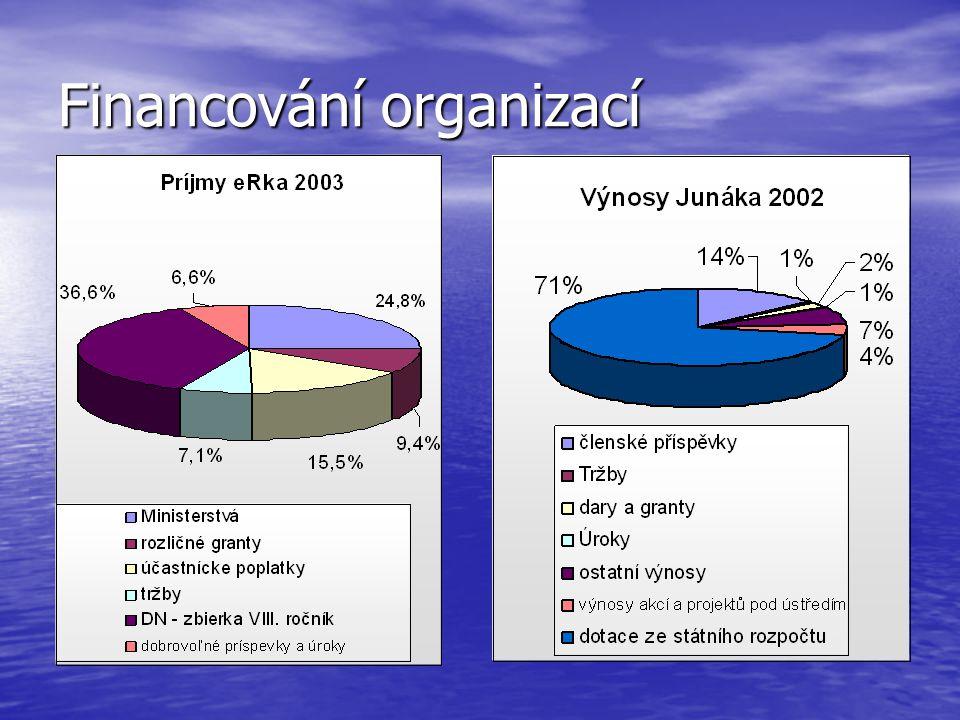 Financování organizací