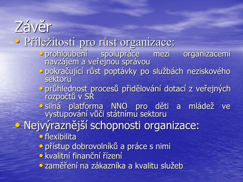 Závěr Příležitosti pro růst organizace: