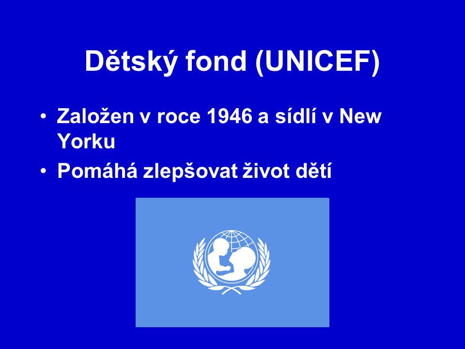Dětský fond (UNICEF) Založen v roce 1946 a sídlí v New Yorku