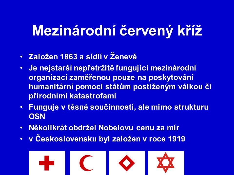 Mezinárodní červený kříž