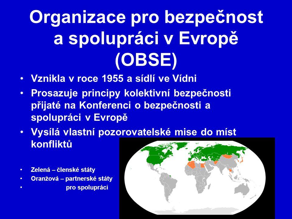 Organizace pro bezpečnost a spolupráci v Evropě (OBSE)