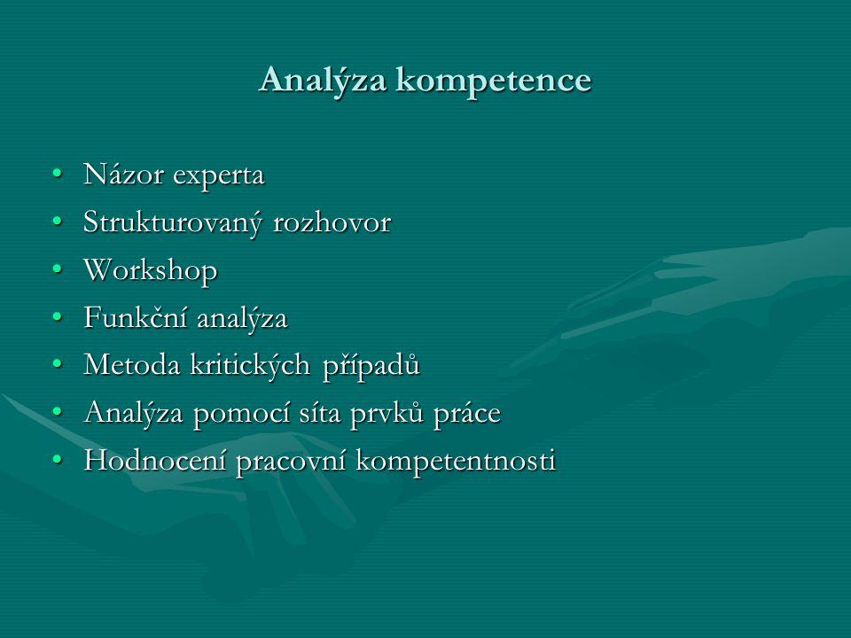 Analýza kompetence Názor experta Strukturovaný rozhovor Workshop