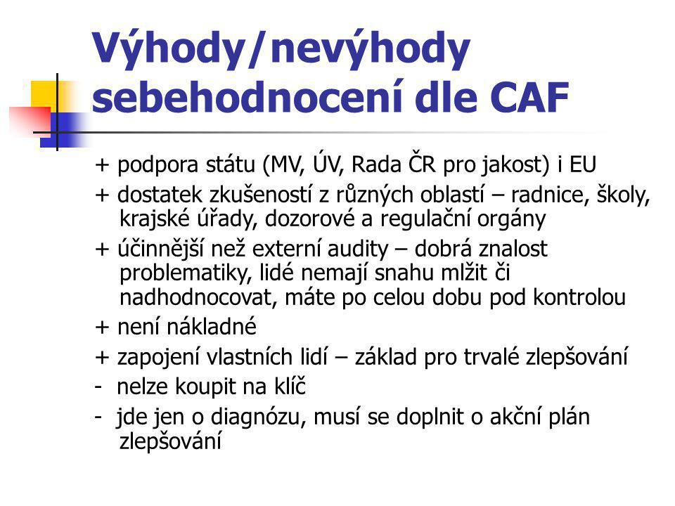 Výhody/nevýhody sebehodnocení dle CAF