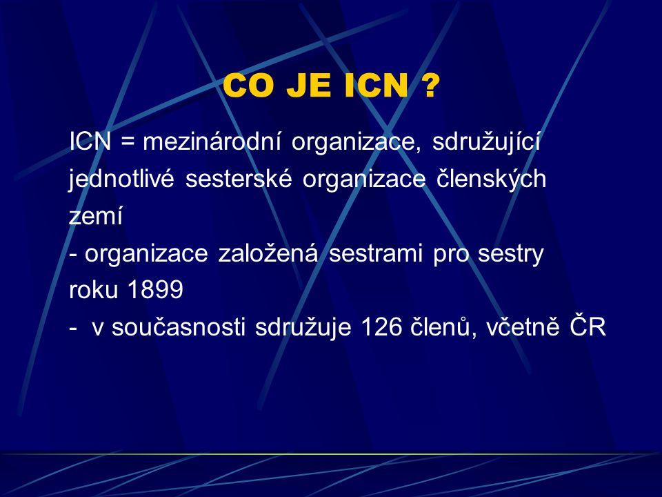 CO JE ICN ICN = mezinárodní organizace, sdružující