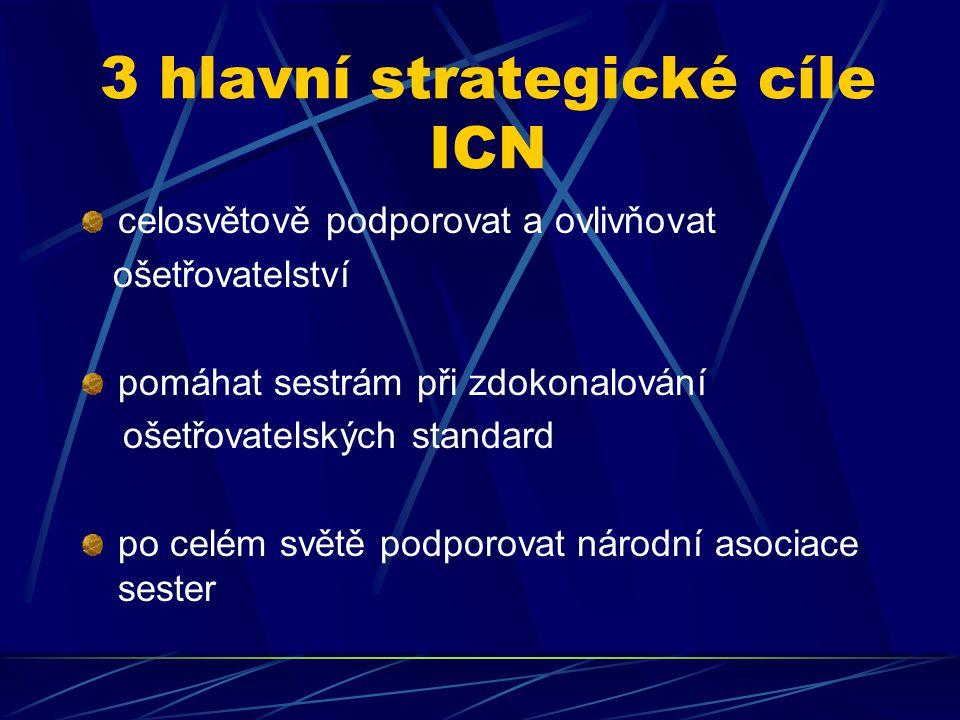 3 hlavní strategické cíle ICN