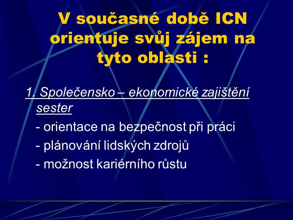 V současné době ICN orientuje svůj zájem na tyto oblasti :