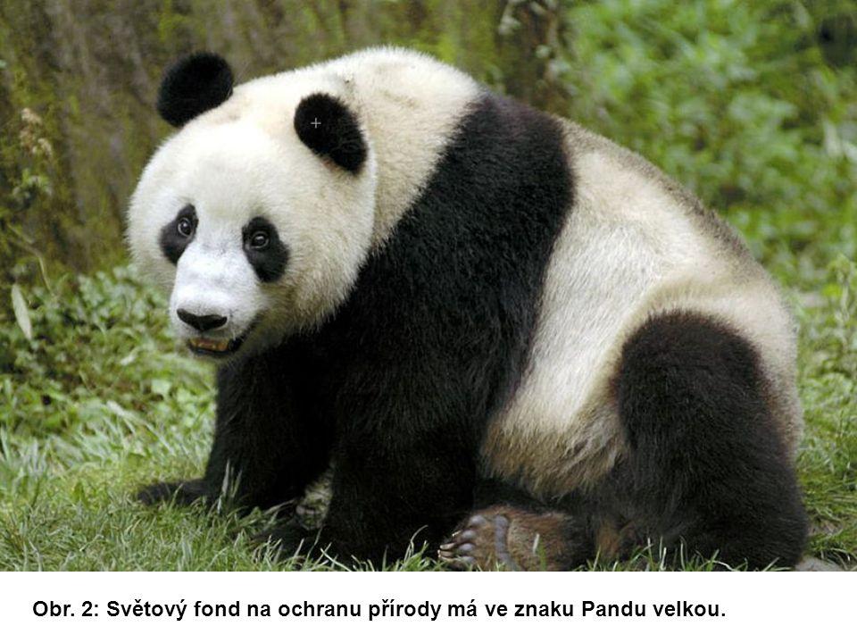 Obr. 2: Světový fond na ochranu přírody má ve znaku Pandu velkou.