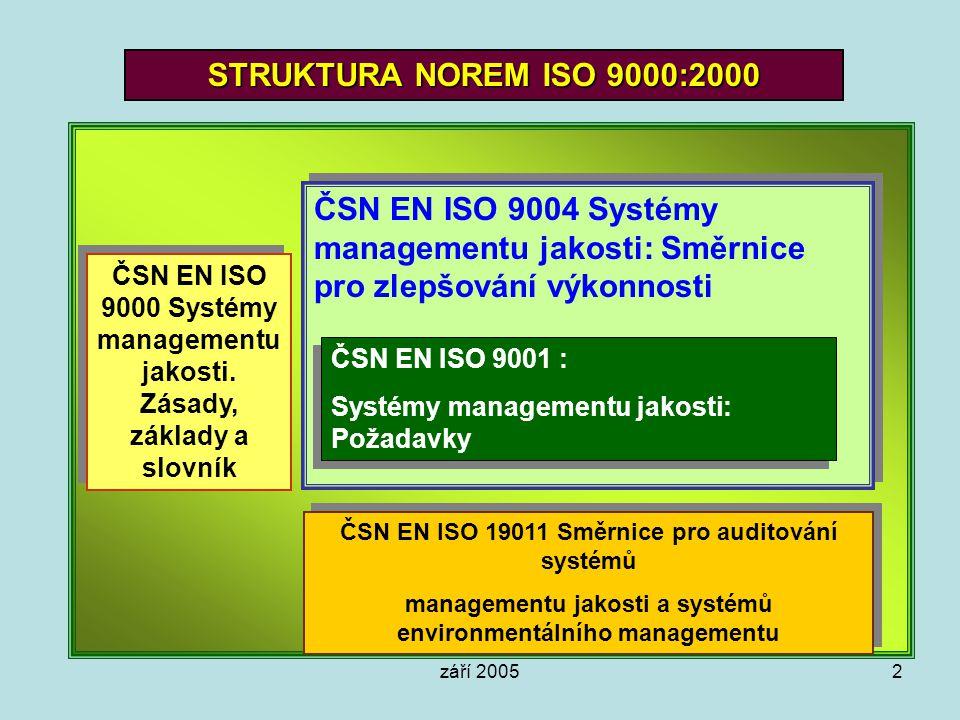 STRUKTURA NOREM ISO 9000:2000 ČSN EN ISO 9004 Systémy managementu jakosti: Směrnice pro zlepšování výkonnosti.