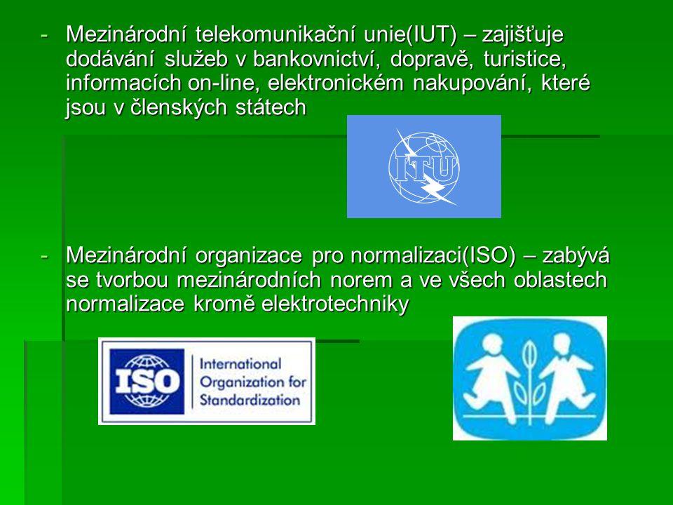 Mezinárodní telekomunikační unie(IUT) – zajišťuje dodávání služeb v bankovnictví, dopravě, turistice, informacích on-line, elektronickém nakupování, které jsou v členských státech