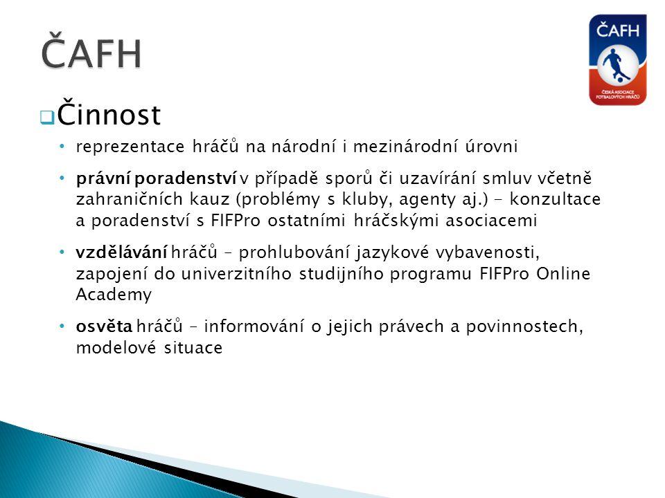 ČAFH Činnost reprezentace hráčů na národní i mezinárodní úrovni