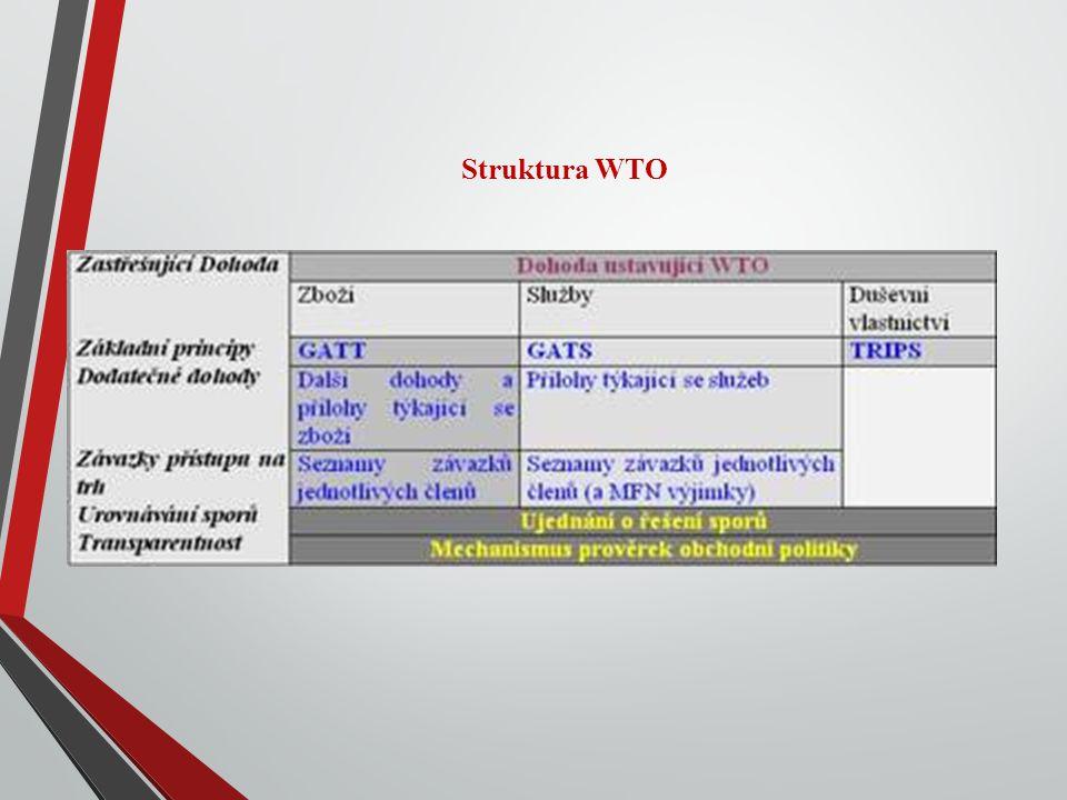 Struktura WTO