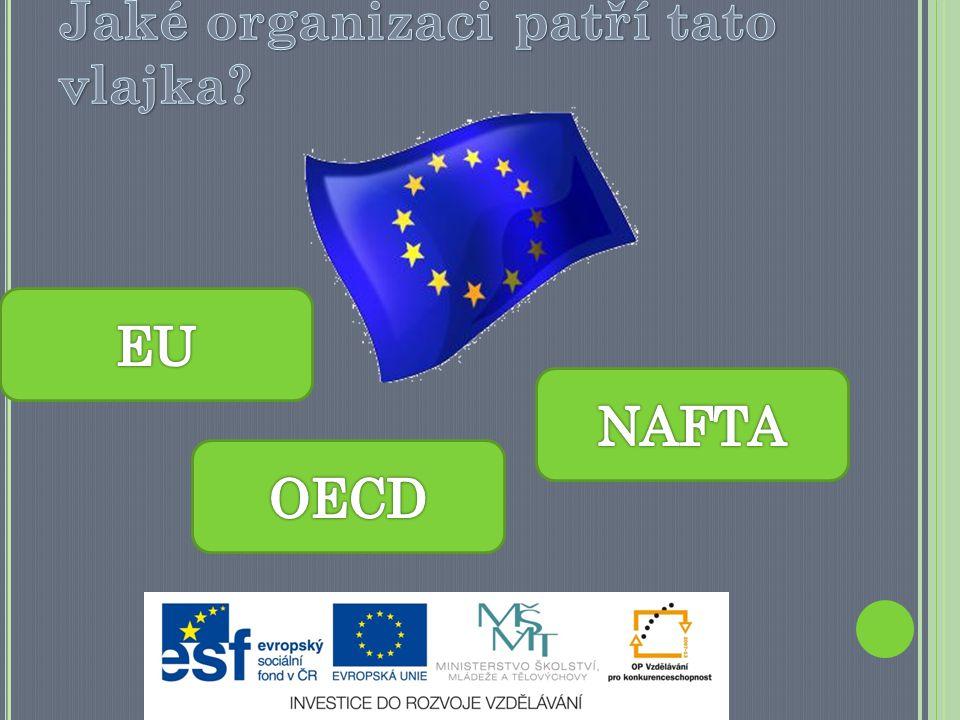 Jaké organizaci patří tato vlajka