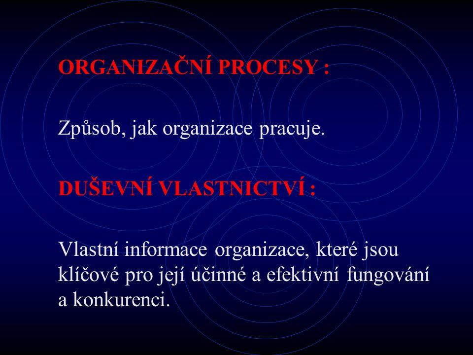 ORGANIZAČNÍ PROCESY : Způsob, jak organizace pracuje. DUŠEVNÍ VLASTNICTVÍ :