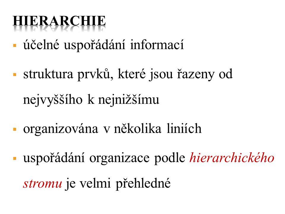 hierarchie účelné uspořádání informací. struktura prvků, které jsou řazeny od nejvyššího k nejnižšímu.