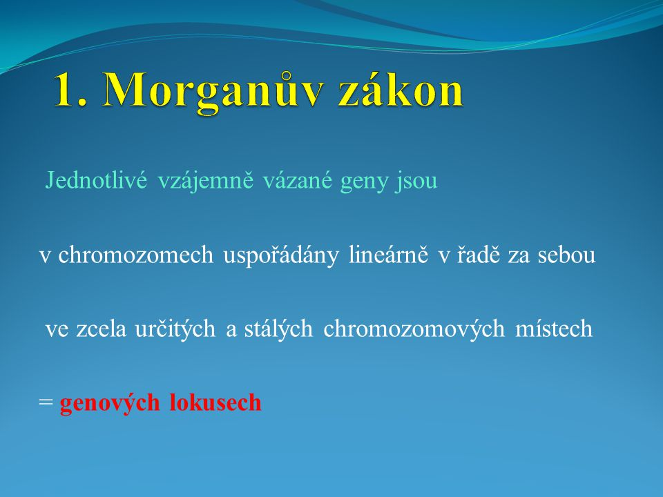 1. Morganův zákon Jednotlivé vzájemně vázané geny jsou