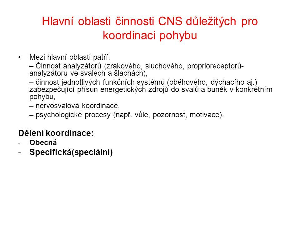 Hlavní oblasti činnosti CNS důležitých pro koordinaci pohybu