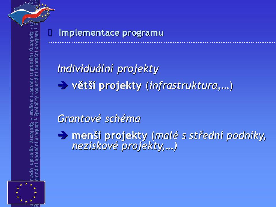 Individuální projekty větší projekty (infrastruktura,…)